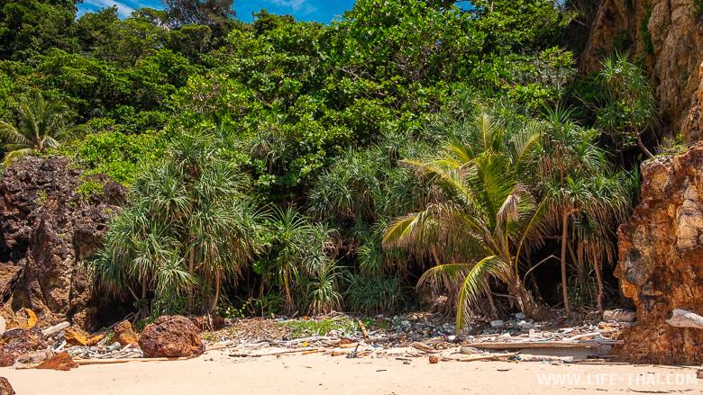 Пляж на ко Крадане, полностью заваленный мусором