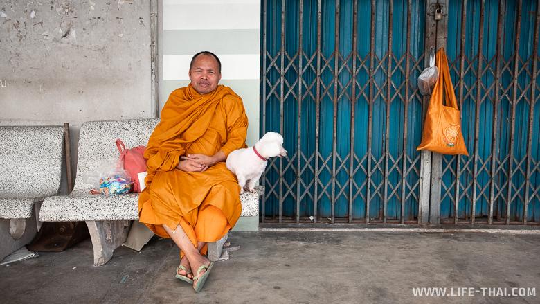 Монах с собачкой в Транге