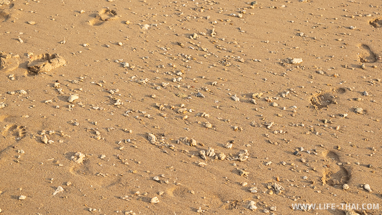 Песок на пляже Клонг Кхонг