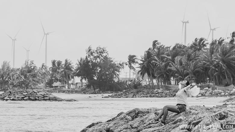 Ветряки в провинции Сонгкла в Таиланде