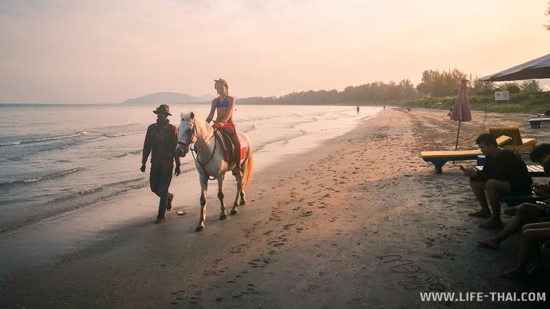 Катание на лошадях по пляжу Хуа Хина