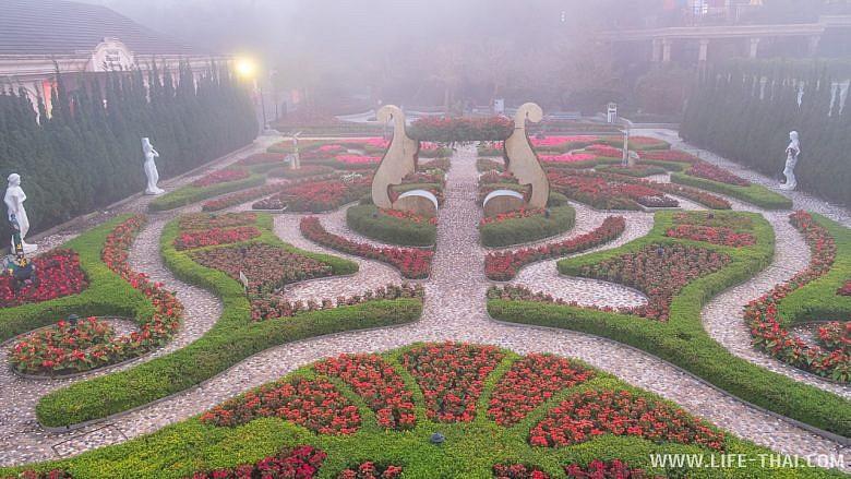 Красивый парк с цветами в тумане