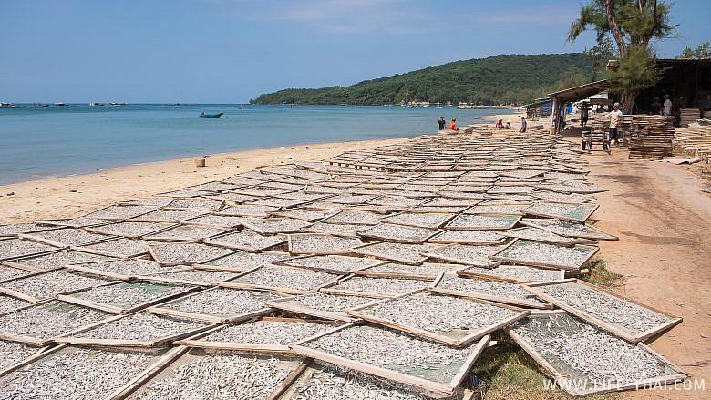 Вьетнамцы сушат рыбу на пляже Bai Xep