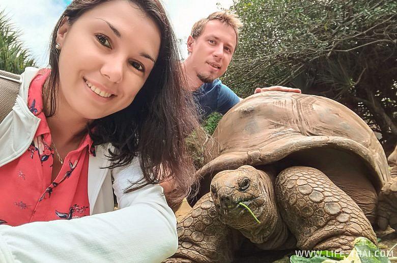 Селфи с гигантскими черепахами на Маврикии