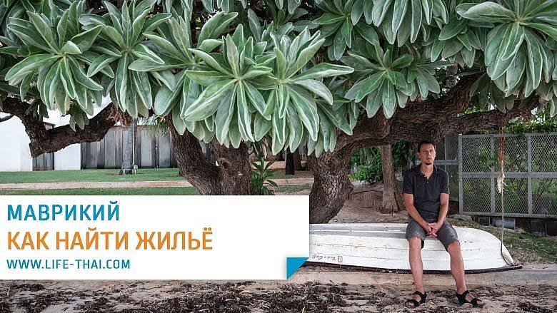 Как найти жильё на Маврикии. Наш опыт поиска квартиры на острове