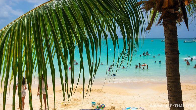 Отзыв об отдыхе на пляжах Маврикия