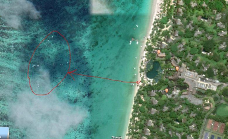 Где поплавать с черепахами на Маврикии самостоятельно