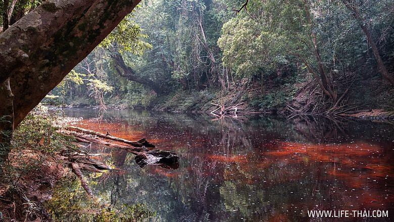 Нац. парк Таман Негара, Малайзия