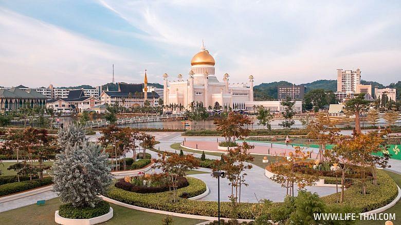 Достопримечательности в столице Брунея - парк с баобабами