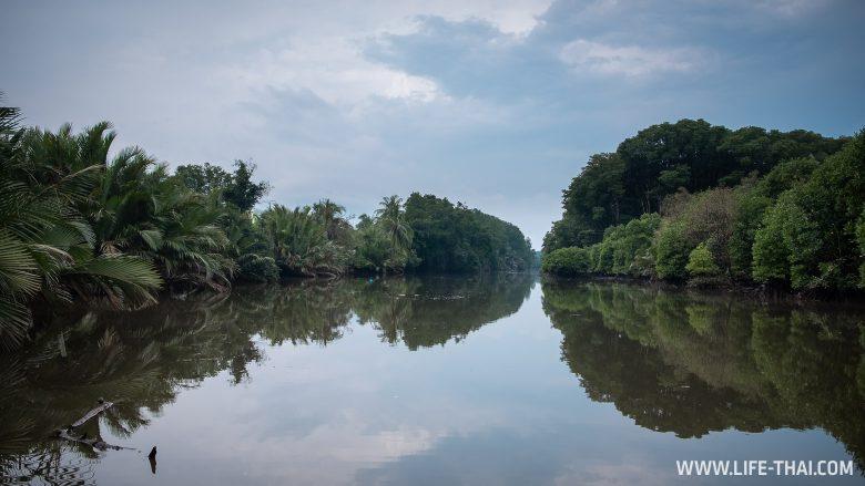 Тропический ливень в Брунее