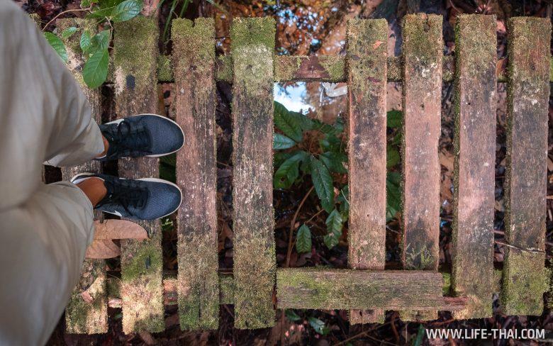 Национальный парк Ламбир в Мири
