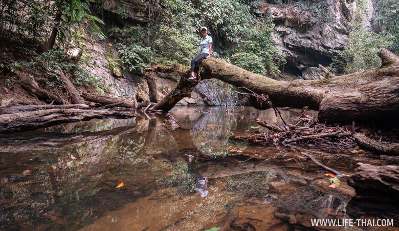 Нац. парк Мулу в штате Саравак, Малайзия