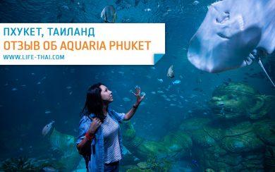Отзыв о новом аквариуме на Пхукете в Central Floresta