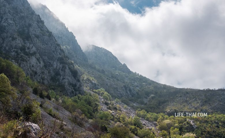 Подъем на гору Паштровская из Близикуче