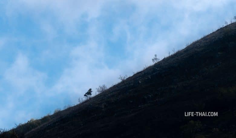 Поход на гору Вели Космач (Velij Kosmac) из Будвы