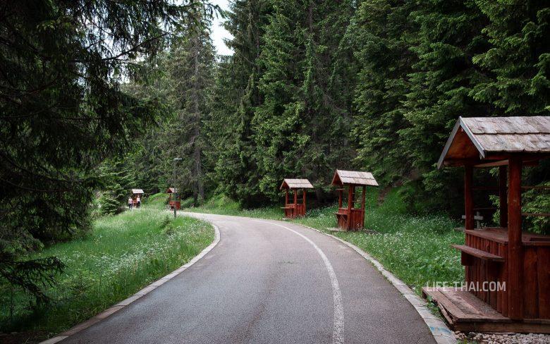 Отзыв о Черном озере в Черногории